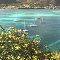 Frigate - Union Island (Les Grenadines) 4