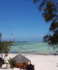 Ocean Lodge Kite & Windsurf